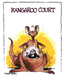 The kangaroo court of public opinion