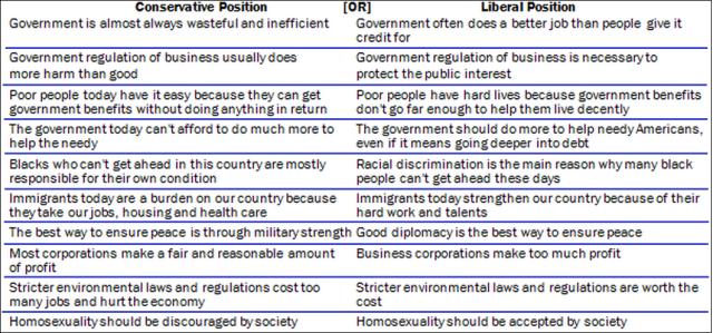 Ideological Consistency Survey