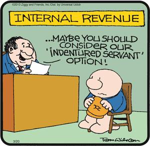 Ziggy - indentured servant to IRS
